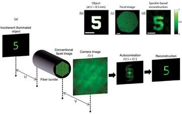 דרך חדשה להדמיה אנדוסקופית דרך סיבים אופטים