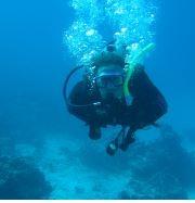 המעבדה לביולוגיה ימית